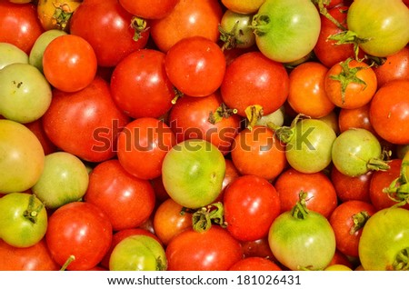 Group of fresh tomatoes