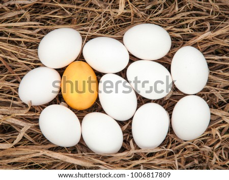 Group of fresh white easter eggs with one golden egg on dry grass