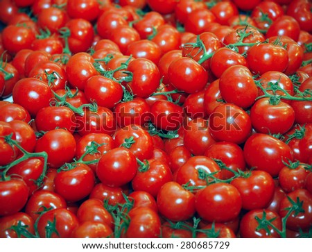 Group of freshly picked tomatoes on market stall - stock photo