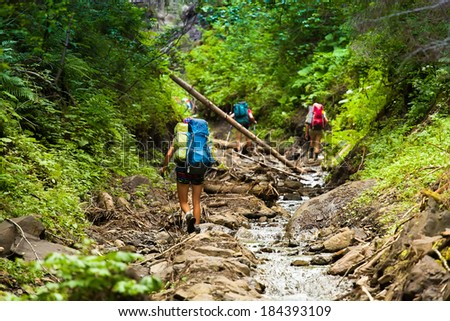 Group of Friends of hikers going up the mountain wood stream, overcoming obstacles. - stock photo