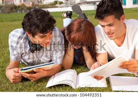 Group of friends studying at the park - stock photo