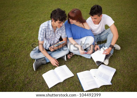 Group of friends studying at the park