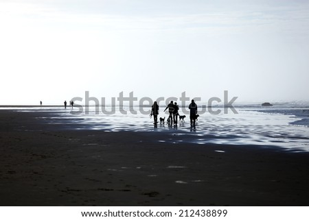 Group of friends walking along the ocean coast - stock photo