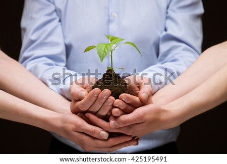 Group of hands holding green plant together with care - closeup shot