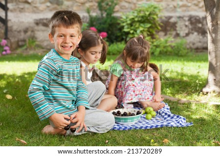 Group of happy children playing and eating cherries in a backyard.