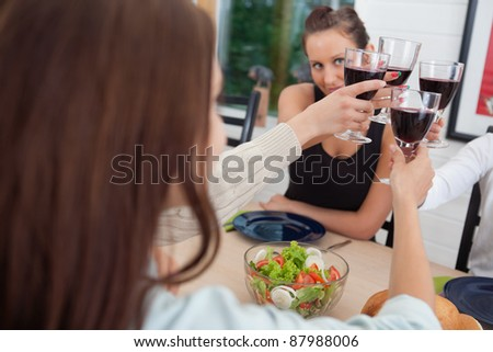 Group of happy female friends toasting together - stock photo