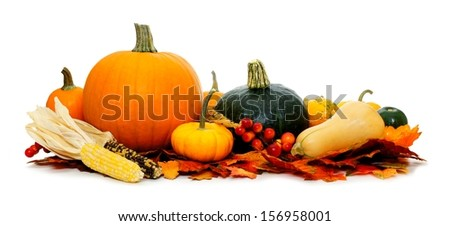 Group of harvest vegetables with autumn leaves over white - stock photo