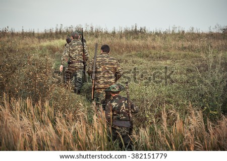 group of hunters going up in the early morning in a rural field through the tall grass during hunting - stock photo