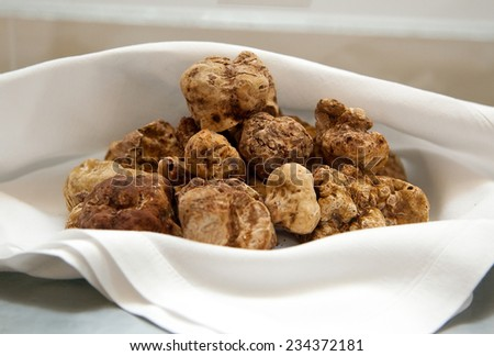 Group of Italian white truffles - stock photo