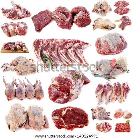 group of meats in front of white background - stock photo