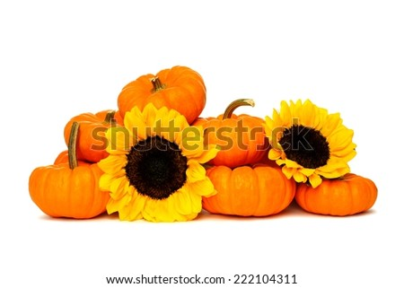 Group of mini pumpkins with autumn sunflowers over a white background - stock photo