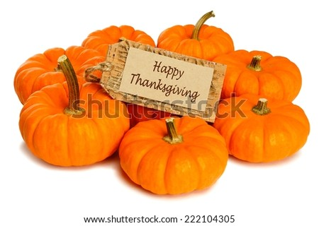 Group of mini pumpkins with Happy Thanksgiving tag on a white background            - stock photo