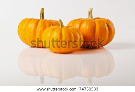 Group of 3 miniature pumpkins on white background with reflection - stock photo