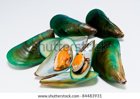 group of mussels boiled with garlic and parsley isolated on white background. - stock photo