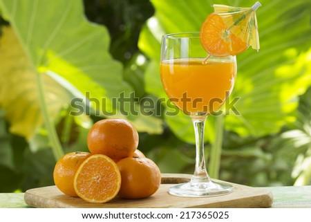 Group of orange and orange juice on garden background  - stock photo