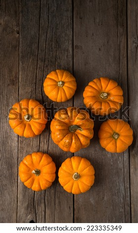 Group of orange pumpkins shot from overhead with copy space - stock photo