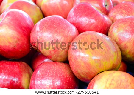 Group of organically grown ambrosia apples in the farmer market at Puyallup, Washington, USA. A close up full frame of apples. - stock photo