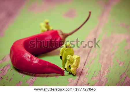 Group of people in protective suit inspecting chili pepper. Macro photography - stock photo