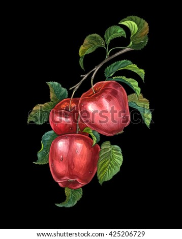 Group of red apples with leaves on a branch. Watercolors drawing. - stock photo