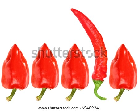 Group of red fresh pepper. Close-up. Isolated on white background. Studio photography. - stock photo