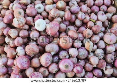 Group of Red Onions.