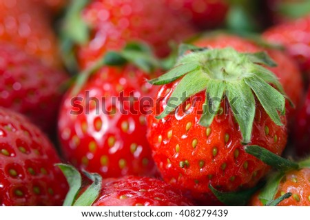 Group of red ripe strawberry with flash filled - stock photo