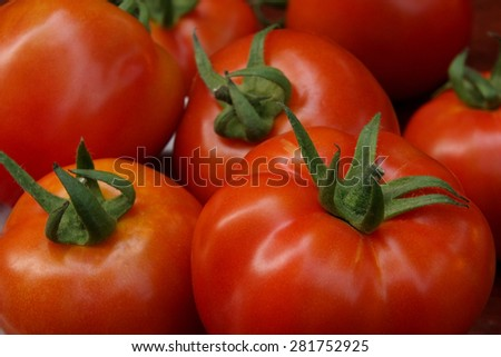 Group of red tomatoes. - stock photo