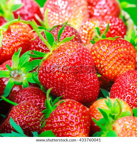 Group of ripe, organic strawberry background, selective focus - stock photo