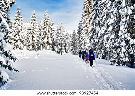 Group of snowshoe hiker in winter forest - stock photo