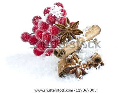 Group of spaces with cinnamon and anise isolated on white background. Selective focus. - stock photo