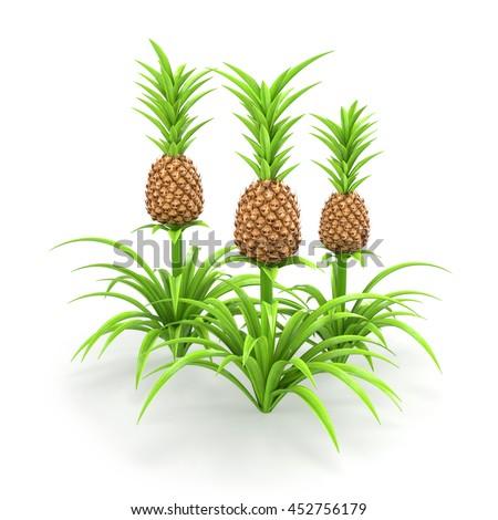 Vector Ripe Fresh Yellow Corn On Stock Vector 583712845 ...