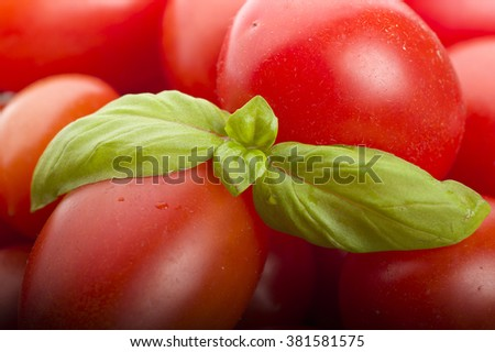 Group of tomato and basil leaves on wood table  - stock photo