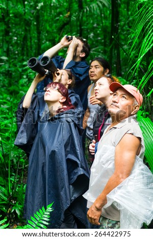 GROUP OF TOURIST IN ECUADORIAN AMAZONIAN PRIMARY JUNGLE LOOKING AFTER WILDLIFE ALONG WITH NATIVE GUIDE  - stock photo