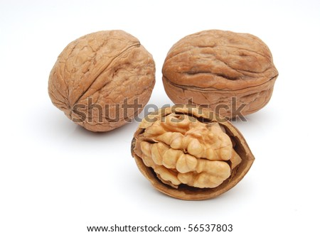 Group of walnuts on white background - stock photo