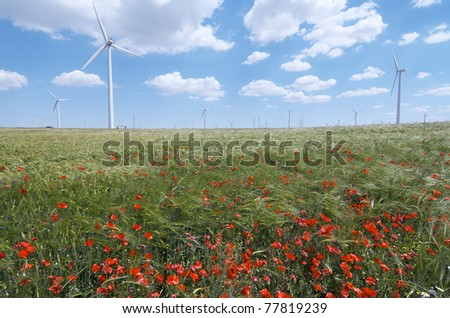 group of  windmills for electric power production  and poppies - stock photo