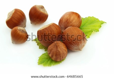 Group of wood nuts with leaves on white background