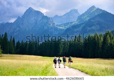 Group of young hikers walking to the big mountains with  tourist bags. Scenery from summer active vacation.