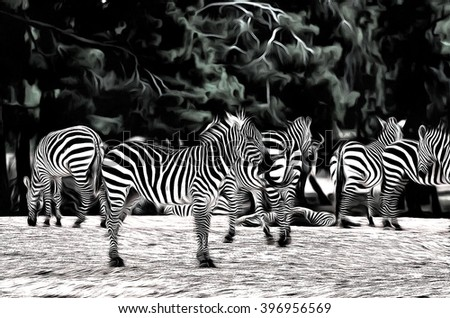 group of zebras  drawing filter - stock photo