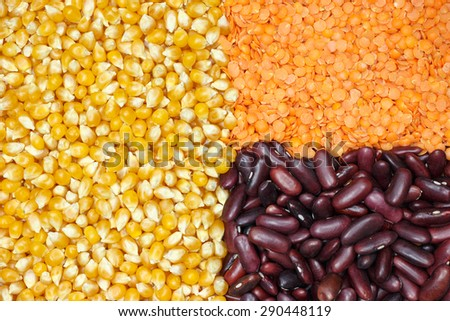 Grouped corn, red lentils and red kidney beans - stock photo
