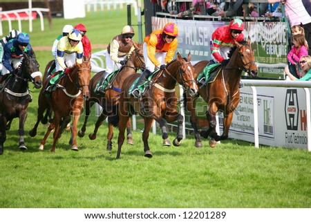 grouped race horses rounding a bend on track - stock photo