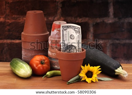 Growing a dollar can be fun - stock photo