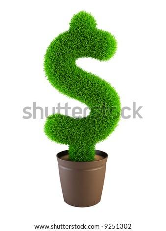 growing dollar symbol isolated on white background - stock photo