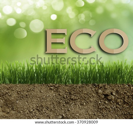 Growing grass in the earth soil - stock photo