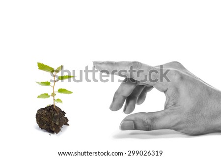 growing green plant & hand, isolated on white. concept = human should preserve nature before too late