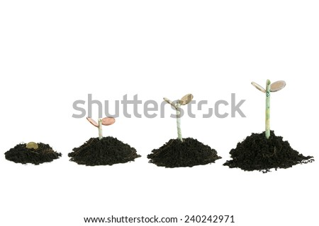 growing investment - stock photo