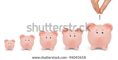 Growing Investment - Piggy Bank on a white background - stock photo