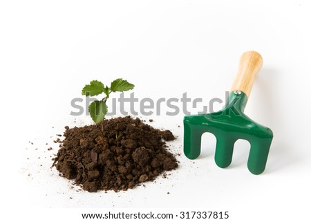 Growing young plant with garden shovel on white background - stock photo