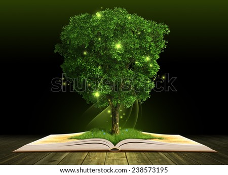 Grown tree in blank open book on dark grunge wooden planks - stock photo