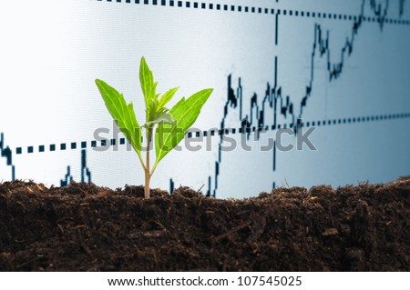 growth or growing economy concept with business chart and young plant - stock photo