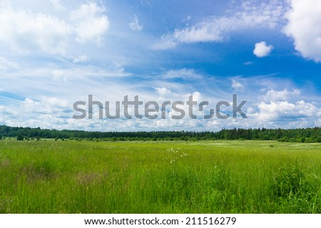 Growth Season Plain Nature  - stock photo